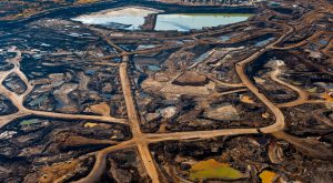 Ecosystem loss is biosphere collapse