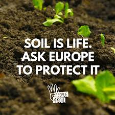 Image result for people4soil