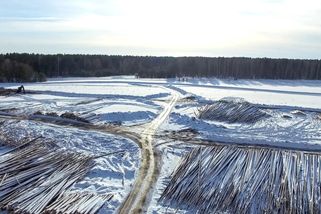 Deforestation in Russia. Credit: Andrey Nyrkov / Alamy Stock Photo. MR5XKF