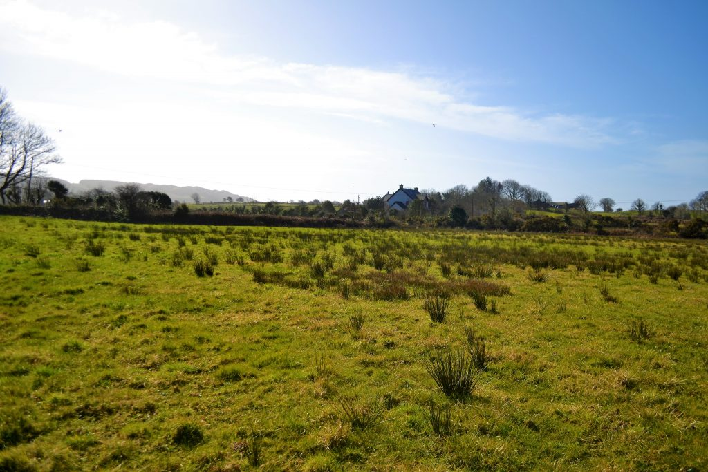 Proposed factory site. Poundlick was part of Skibbereen's green belt until it was rezoned to an industrial area in early 2016 Photo: Shamim Malekmian