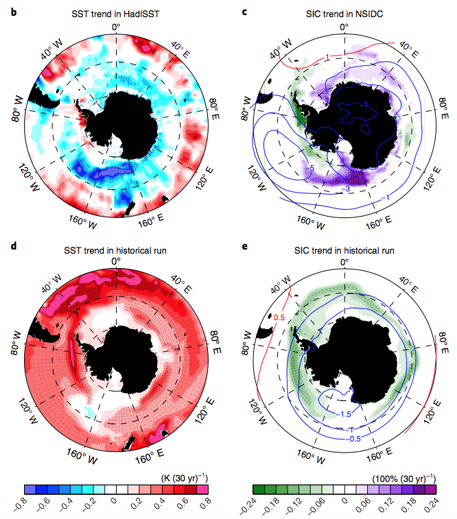 Changes to sea surface temperature (top left) and sea ice (top right) from 1979-2012 in Antarctica, compared to simulated changes to sea surface temperatures (bottom left) and (bottom right) over the same time period when only climate change is considered. On the left-hand maps, pink and red show increases in sea surface temperature while blue shows decreases. On the right-hand maps, green shows sea ice losses while purple shows sea ice gains. Lines are used to indicate the location of significant trends.
