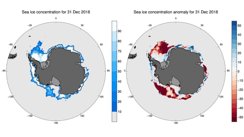 Maps of sea ice concentration (left) and sea ice concentration relative to long-term average (right), for 31 December 2018. In the right map, blues indicate higher than average sea ice concentrations; reds indicate lower than average concentrations. Credit: Phil Reid, Australian Bureau of Meteorology, and NSIDC.