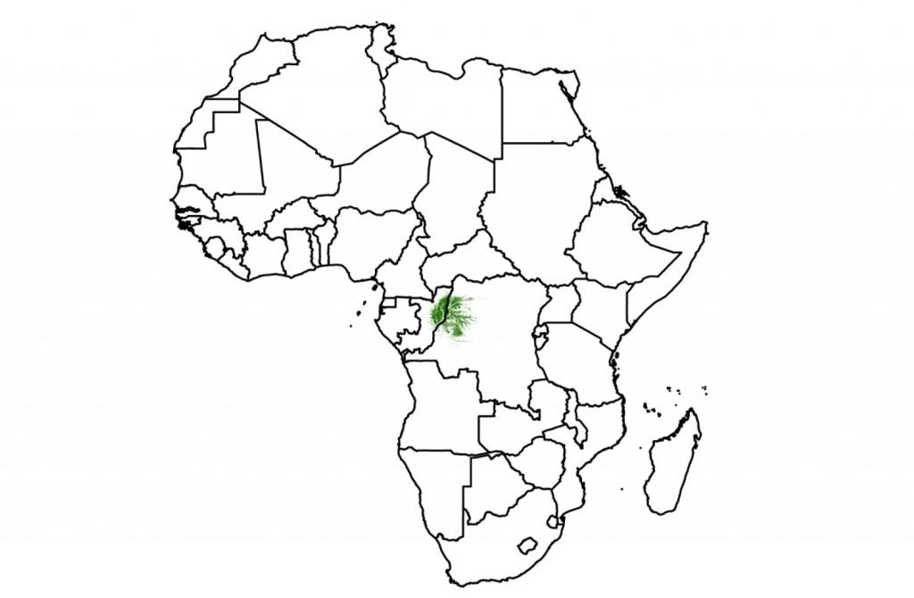 Répartition des zones humides dans la Cuvette Centrale en Afrique