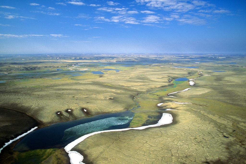 Aulavik National Park, northern Banks Island, Canada. Credit: All Canada Photos / Alamy Stock Photo. BFHN61