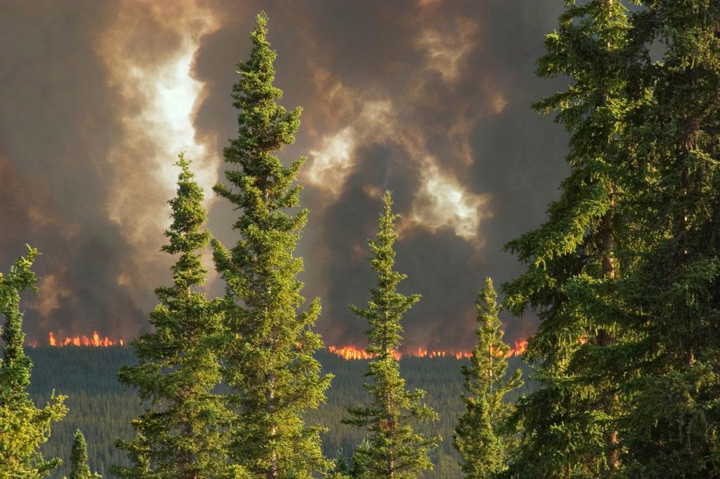 Forest fire in Yukon Territory, Canada. Credit: Design Pics Inc / Alamy Stock Photo. BCJP67