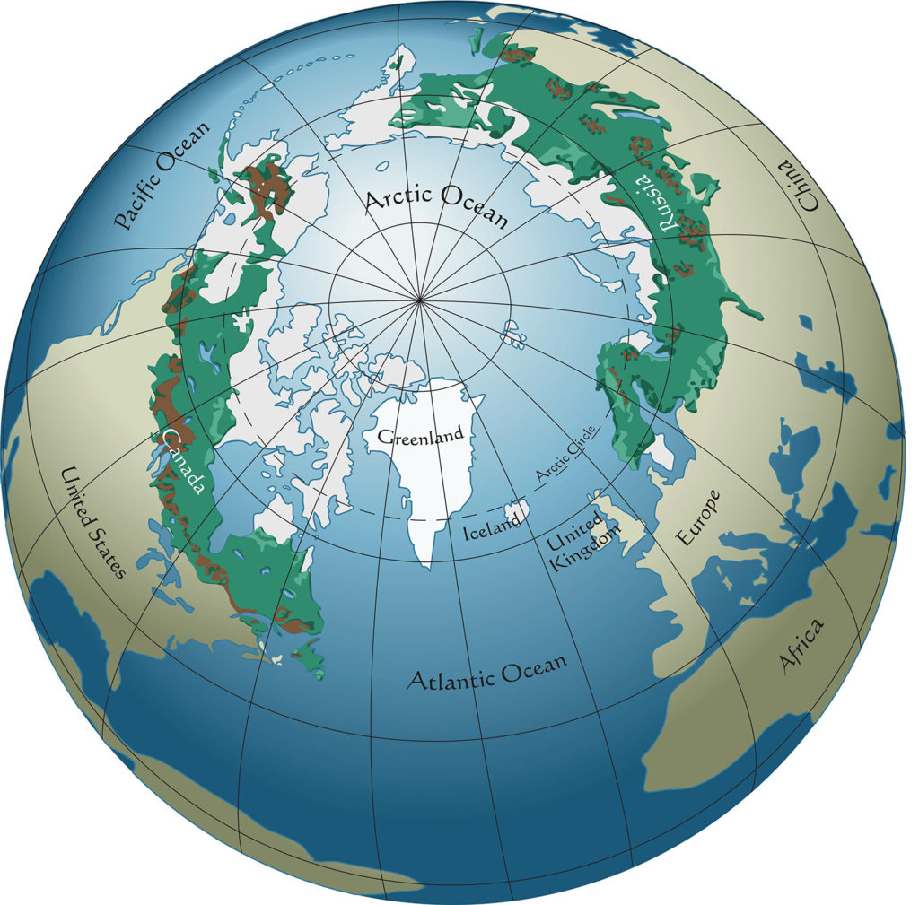 A world map showing the locations of boreal forests. Credit: aroderick / Alamy Stock Vector. W80GDJ