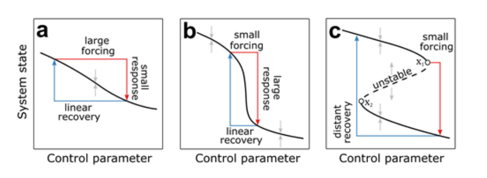 Possible responses of a system to a perturbation in a control parameter