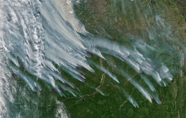 A satellite image of fires in Siberia.