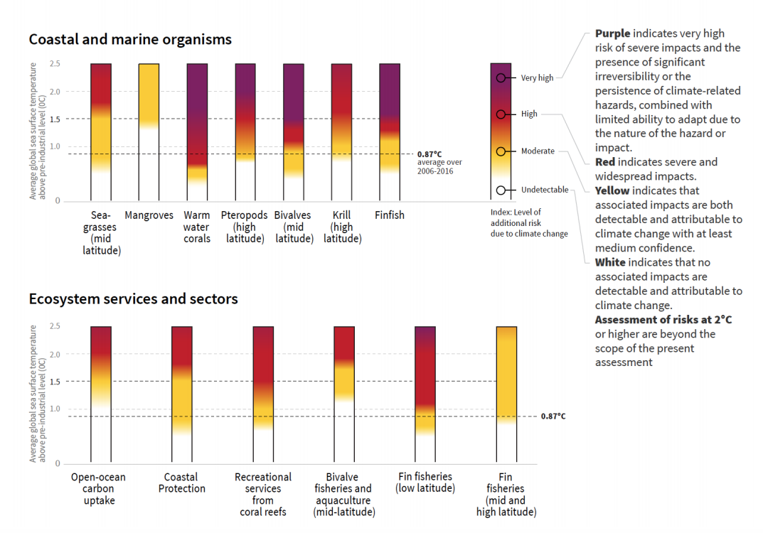 Summary of additional risks of impacts from ocean warming (and associated climate change factors such ocean acidification) for a range of ocean organisms, ecosystem and sectors at 1C, 1.5C and 2C warming of average sea surface temperature, relative to pre-industrial levels. Credit: IPCC (pdf)