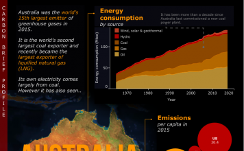 Image result for Carbon Brief Profile Australia