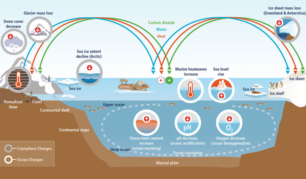 Schematic illustration of key components and changes of the ocean and cryosphere, and their linkages in the Earth system through the movement of heat, water, and carbon. Source: IPCC: Box 1.1, Figure 1 (pdf)