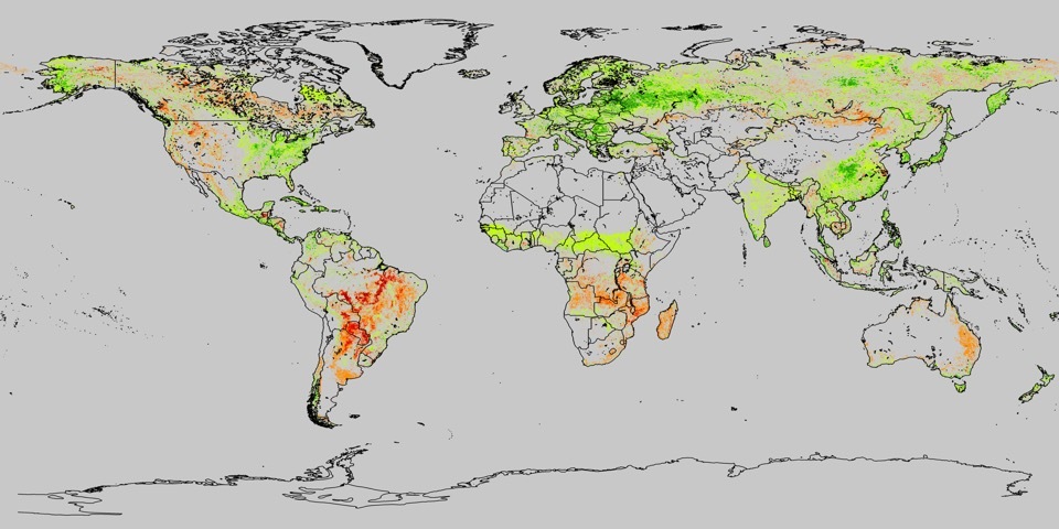global tree loss/tree gain since the early 1980s