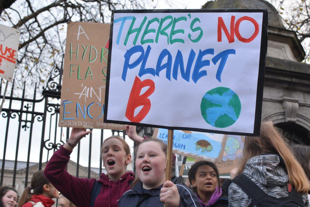 School strike Dublin November 2019 Photo: Kayle Crosson