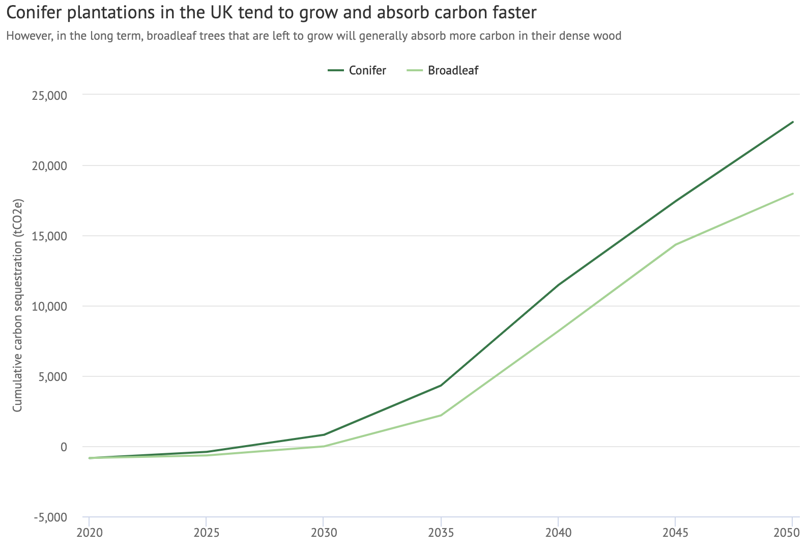 Carbon sequestration up until the 2050 net-zero deadline in a conifer (dark) and broadleaf (light) stand of trees. This chart is based on 50-hectare plantations, one made up of conifers planted to the UK Forestry Standard (75% sitka spruce at yield class 20, 10% Douglas fir and Scots pine, 5% native broadleaves, 10% open space), and one a native broadleaf scheme with yield class 6 (90% broadleaves, 10% open space). Both assume no thinning or felling has taken place.