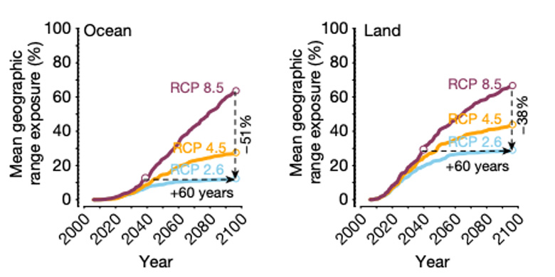 The projected percentage of ocean (left) and land (ecosystems) exposed to intolerable temperatures under RCP2.6 (light blue), RCP4.5 (orange) and RCP8.5 (purple) from 2020-2100. Source: Trisos et al. (2020)