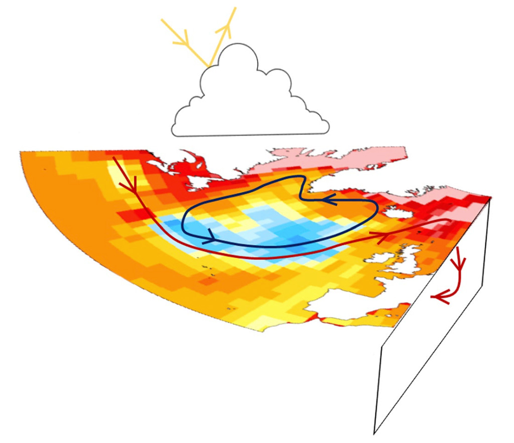 Illustration of the drivers of the warming hole. The AMOC is indicated by red arrows, the gyre circulation by blue arrows and cloud feedback in the form of reflected shortwave radiation by yellow arrows. Shading represents the surface temperature trend of the 1% CO2 increase per year ensemble. Source: Keil et al. (2020)