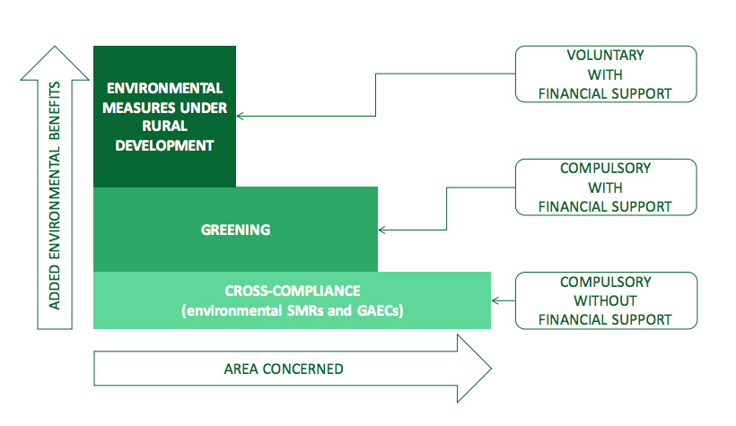 Structure of CAP investment instruments.